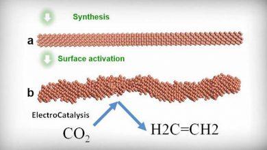 Photo of เปลี่ยนก๊าซคาร์บอนไดออกไซด์เป็นเอทิลีน